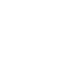Mina Music Production